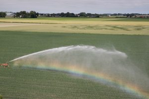 Beregenen en irrigatie