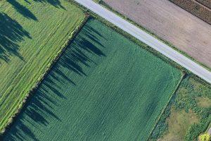 Wanneer mag ik grasland scheuren, doospuiten of vernietigen in 2021?