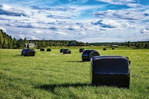 RaniWrap: Extra duurzaam balen ontwikkelen