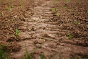 Bodemverdichting? Checklists helpt boer bewuste keuze maken