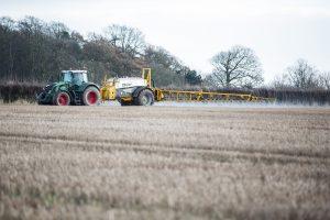 Boeren werken aan natuurlijke alternatieven voor onkruidbestrijding
