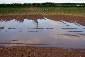 Meldpunt RVO voor schade hoogwater Limburg open